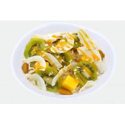 Porridge Vegan Tropical fever